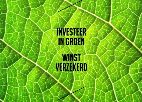 oinvesteer in groen winst verzekerd